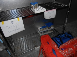 My spot in the cooler: samples half-way processed and three new bags of sample.