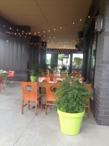 The gorgeous patio of Tiger Sushi, this is the area that we will be using for our event.