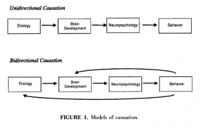 Figure 1. Causal models of psychopathology. Credit: Pennington (2002).
