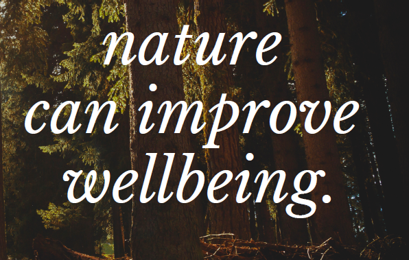 It's time for Mental Health Wellness Weeks!  Take some time to unplug and enjoy nature – it's good for your mental health!  Want more information on the benefits of nature?  Check out the Counseling Center Block 3 bulletin board across from the mailboxes. Questions?  Counseling@cornellcollege.edu